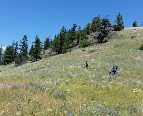 Things to do in Merritt BC Canada-Upper Ridge trail from Lone Pine trail