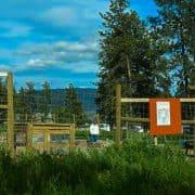 garden entrance food, gardening, community