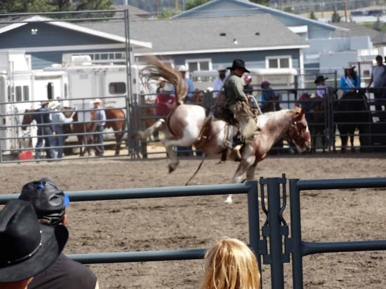 Nicola Valley Pro Rodeo & Fall Fair.