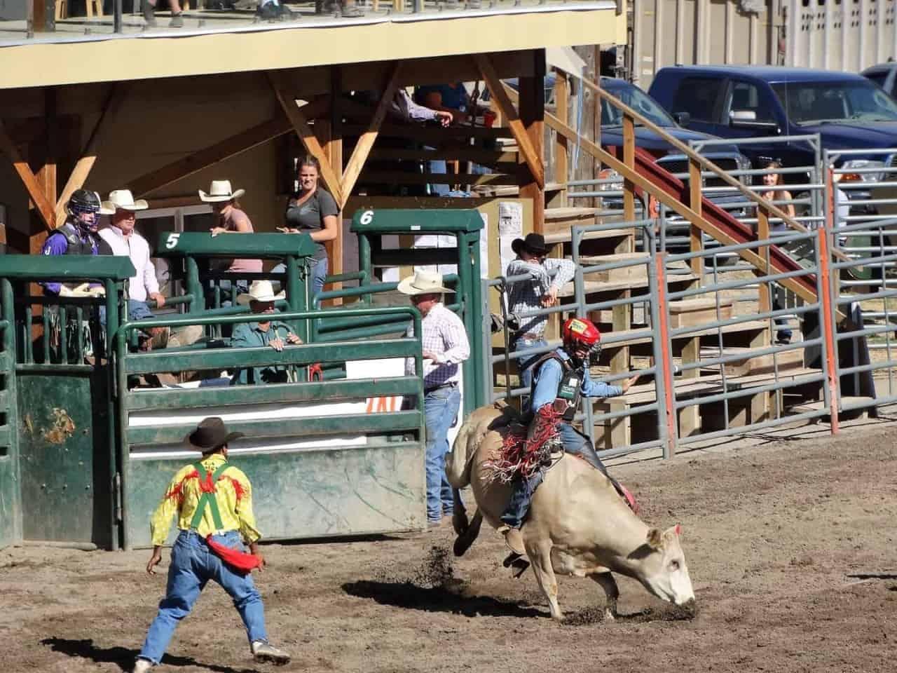Nicola Valley Pro Rodeo Association.