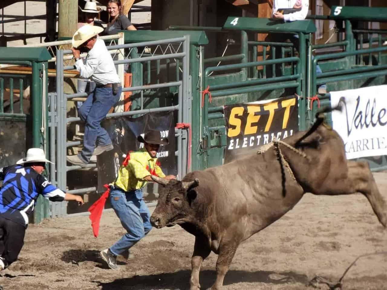 Nicola Valley Pro Rodeo BC.