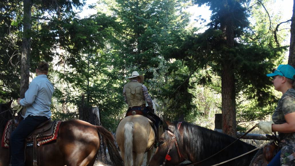 Nicola Valley horseback riding.