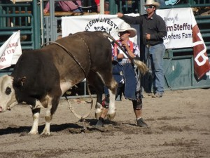 Clowns save lives at Nicola valley Rodeo