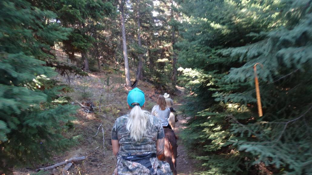 Merritt horseback riding tours