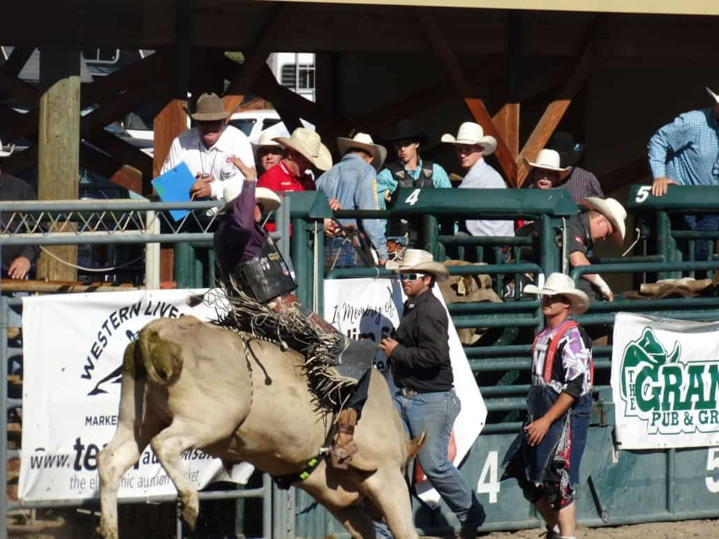 Nicola Valley Rodeo Association
