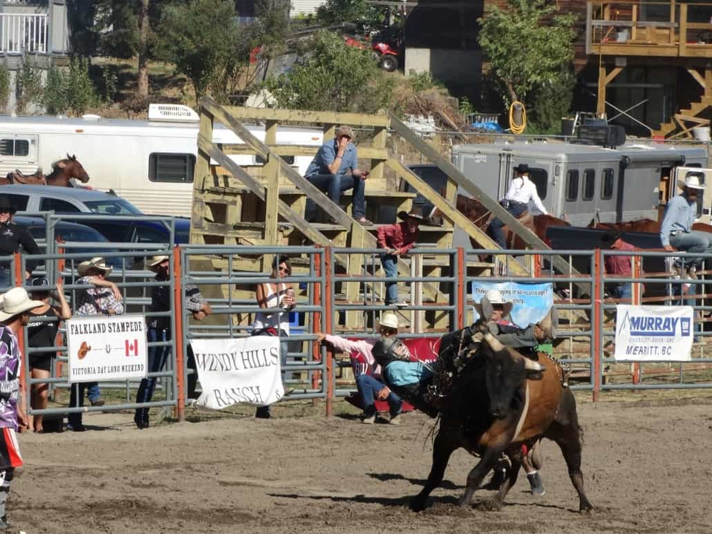 Nicola Valley Rodeo bumps and bruises