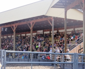 Full house at the Nicola Valley Rodeo event