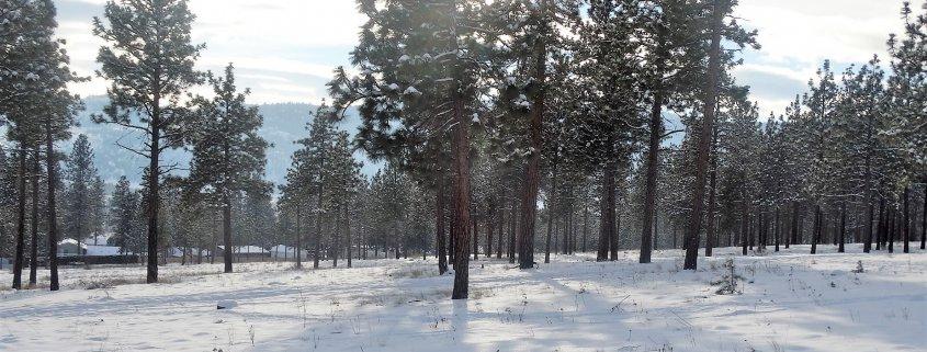 Winter Hiking in Merritt BC.