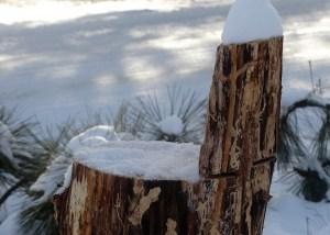 winterhikingnicolavalley.