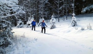 merritt cross country skiing - kane valley
