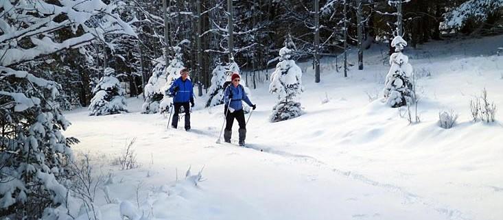 merritt cross country skiing - kane valley