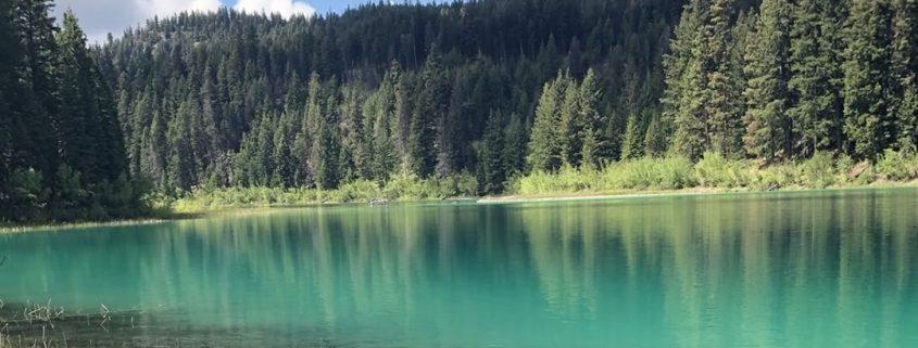 Kennedy Lake Hike