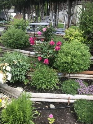 Terrace garden with logs