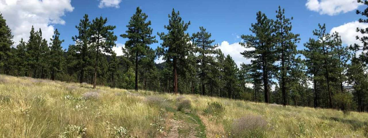 Nicola Valley Walking Trails
